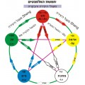 חמשת היסודות ברפואה הסינית